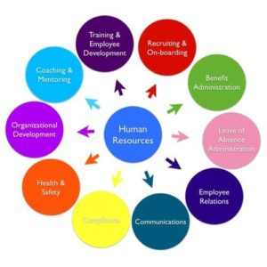 hr consultation services